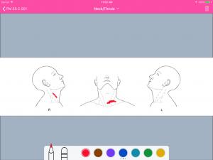 Body sketch (neck)