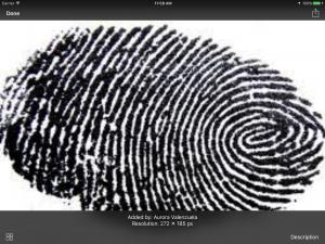 Fingerprint preview